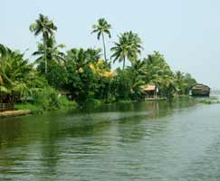 Tour Package In Goa